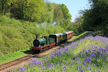 Showing a steam train on the Bluebell Railway